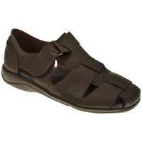 Sapatos Homem Sandálias Duendy 951 Marrón