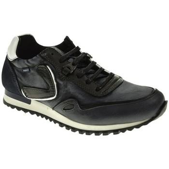 Sapatos Homem Sapatilhas Baerchi 5102 Azul