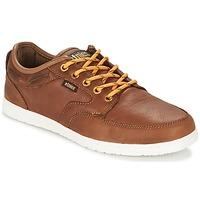Sapatos Homem Sapatilhas Etnies DORY Castanho