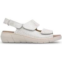 Sapatos Mulher Sandálias Saguy's SANDÁLIAS SAGUYS MODELOS W LERMA BEIGE
