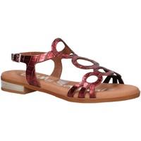 Sapatos Mulher Sandálias Oh My Sandals 4655-BR113 Rojo
