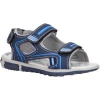 Sapatos Rapaz Sandálias desportivas Happy Bee B142970-B2579 Azul
