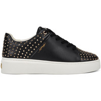 Sapatos Mulher Sapatilhas Ed Hardy Stud-ed low top black/gold Preto