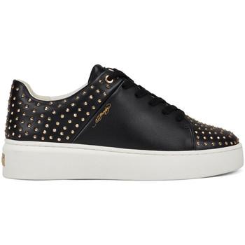 Sapatos Mulher Sapatilhas Ed Hardy - Stud-ed low top black/gold Preto