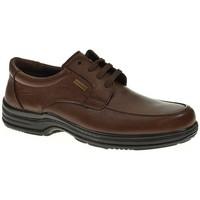 Sapatos Homem Sapatos Luisetti 20401 Marrón