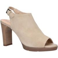 Sapatos Mulher Sandálias Geox D92CLA 00022 D ANNYA Beige