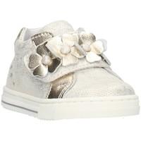 Sapatos Criança Sapatilhas Balocchi 106299 Cinza