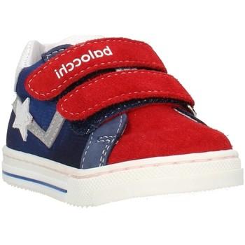 Sapatos Criança Sapatilhas Balocchi 103202 Multicolor