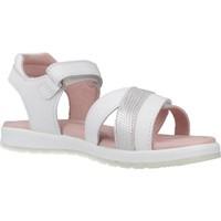 Sapatos Rapariga Sandálias Garvalin 202642 Branco