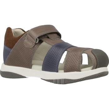 Sapatos Rapaz Sandálias Garvalin 202452 Marron