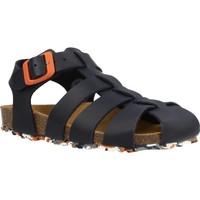 Sapatos Rapaz Sandálias Garvalin 202474 Azul