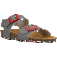 Sapatos Rapaz Sandálias Garvalin 202475 Cinza