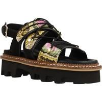 Sapatos Mulher Sandálias Elvio Zanon EL0901X Preto