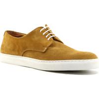 Sapatos Homem Sapatos Parodi Shoes ULISSE Castanho