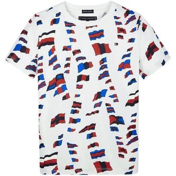 Textil Rapaz T-Shirt mangas curtas Tommy Hilfiger Kids AOP TEE vermelho