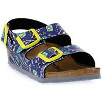Sapatos Criança Sandálias Birkenstock MILANO ROBOTS BLUE CALZ S Blu