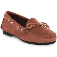 Sapatos Mulher Mocassins Frau CASTORINO TERRA Marrone