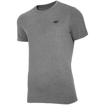Textil Homem T-Shirt mangas curtas 4F TSM003 Cinzento
