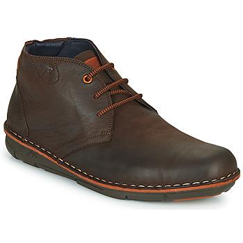 Sapatos Homem Botas baixas Fluchos ALFA Castanho