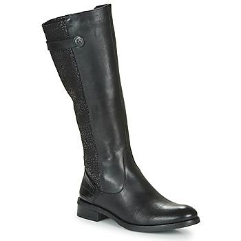 Sapatos Mulher Botas Dorking TIERRA Preto