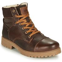 Sapatos Rapaz Botas baixas Bullboxer ALL518E6LA-BRWN Castanho