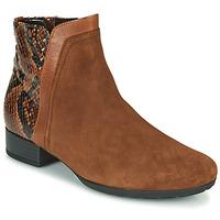 Sapatos Mulher Botins Gabor 5271235 Camel