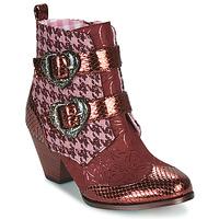 Sapatos Mulher Botas baixas Irregular Choice TOO HEARTS Bordô