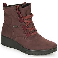 Sapatos Mulher Botas baixas Romika Westland CALAIS 08 Bordô