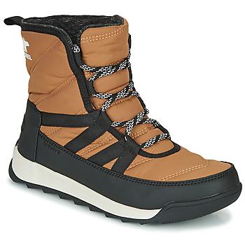 Sapatos Mulher Botas baixas Sorel WHITNEY II SHORT LACE Castanho