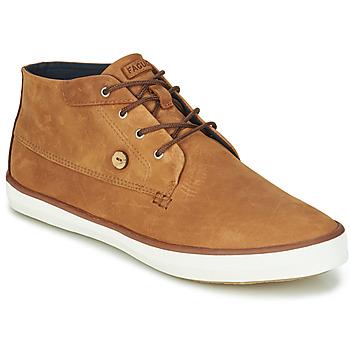Sapatos Homem Sapatilhas de cano-alto Faguo WATTLE Castanho