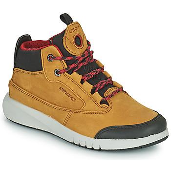 Sapatos Rapaz Botas baixas Geox AERANTER ABX Camel