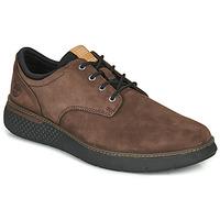 Sapatos Homem Sapatilhas Timberland CROSS MARK PT OXFORD Castanho