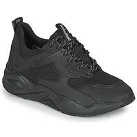 Sapatos Mulher Sapatilhas Timberland DELPHIVILLETEXTILESNEAKER Preto