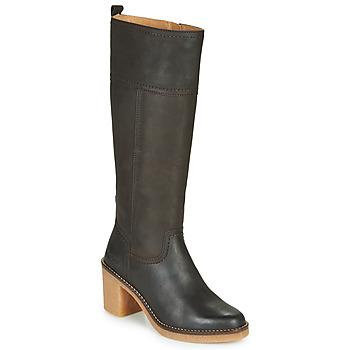 Sapatos Mulher Botas Kickers AVERNO Castanho / Escuro