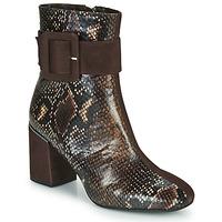 Sapatos Mulher Botins Perlato JAMIROCK Castanho