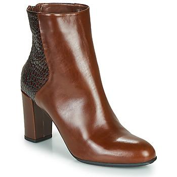 Sapatos Mulher Botins Perlato JAMICOT Castanho