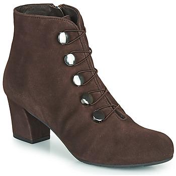 Sapatos Mulher Botins Perlato JAMOVE Castanho