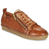Sapatos Mulher Sapatilhas Pikolinos LAGOS 901 Castanho