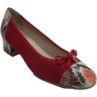 Sapatos Mulher Escarpim Roldán Vestido sapato mulher manoletina tipo Ro rojo