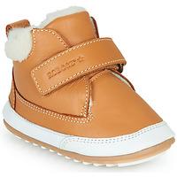 Sapatos Criança Botas baixas Robeez MIKRO SHOW Conhaque