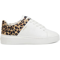 Sapatos Mulher Sapatilhas Ed Hardy - Wild low top white leopard Branco