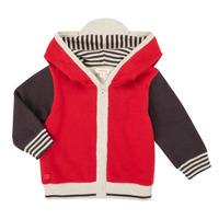 Textil Rapaz Casacos de malha Catimini CR18000-38 Multicolor