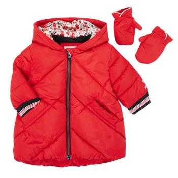 Textil Rapariga Quispos Catimini CR42013-38 Vermelho