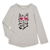 Textil Rapariga T-shirt mangas compridas Catimini CR10275-26-J Cinza