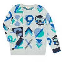 Textil Rapaz camisolas Catimini CR18034-23-C Multicolor