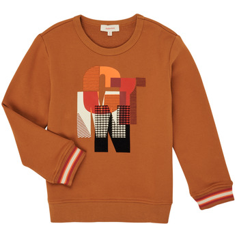 Textil Rapaz Sweats Catimini CR15024-63-C Castanho