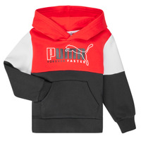 Textil Rapaz Sweats Puma ALPHA HOODY Multicolor