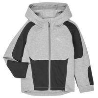 Textil Rapaz Sweats Puma EVOSTRIPE HOODED JACKET Cinza