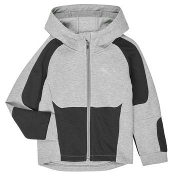 Textil Rapaz Sweats Puma EVOSTRIPE HOODED JACKET Cinza