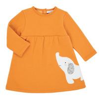 Textil Rapariga Vestidos curtos Noukie's Z050083 Laranja